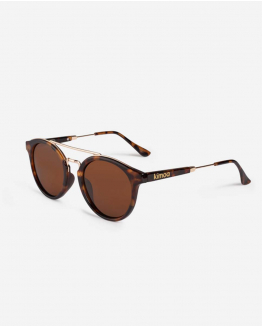 Brown Carey Cape Town Sunglasses One Size Unisex